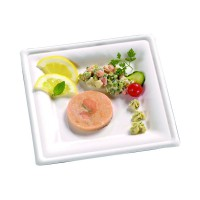 White square sugarcane fibre plate  205x205mm