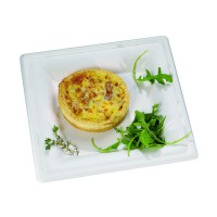 White square sugarcane fibre plate  255x255mm