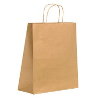 Kraft/brown paper carrier bag with twisted handles 0ml   H290mm